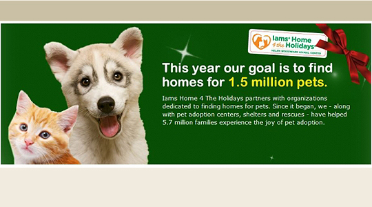 Iams Home For The Holidays Pet Charity Banner