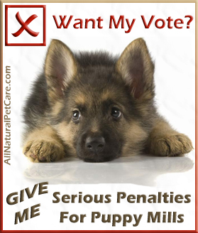Vote for Serious Penalties for Puppy Mill Operators