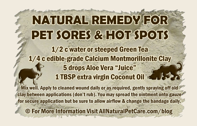 Natural Remedy Recipe for Pet Sores and Hot Spots