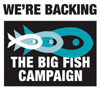 The Big Fish Campaign