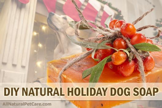 Diy natural holiday scented dog soap recipes all natural for Diy dog bathing system