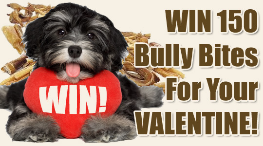 Win 150 Organic Bully Bites for your Pet Valentine!