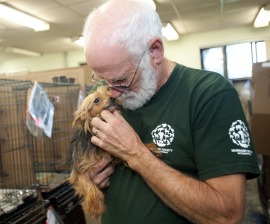 HSI Canada with Rescued Quebec Puppy Mill Dog