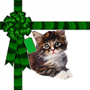 Free Cat Christmas Background Tile for websites, Blogs or Twitter