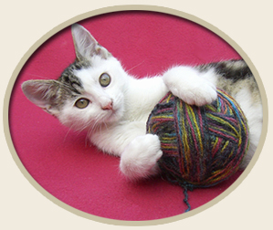 Free Knit, Crochet, Sewing Patterns - Animal Shelters