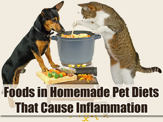 Foods in Homemade Pet Diets That Cause Inflammation