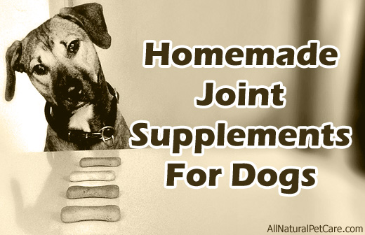 Homemade Joint & Arthritis Supplements for Dogs