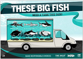 The Big Fish Campaign Poster