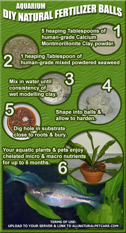 DIY Fertilizer Balls for Aquarium Plants Infographic