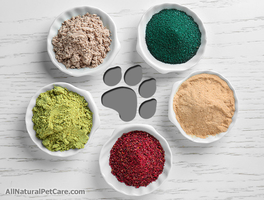 Using Nutritive Herbs for Pet Dietary Supplements (with Recipe)