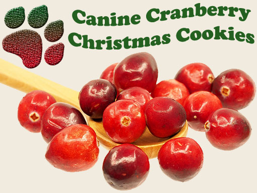Canine Cranberry Christmas Cookies