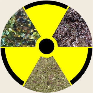 Is Your Pet's Seaweed Radioactive?