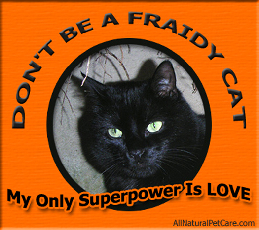 Black Cat Halloween Safety