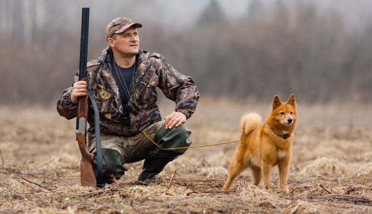 Hunting Wild Game for Your Dog or Cat With Instant Pot Stew Recipe