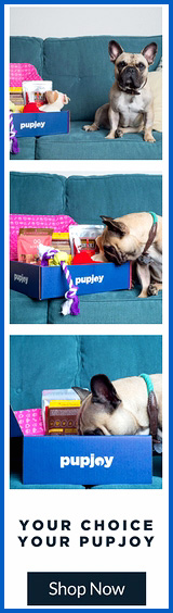 Pupjoy Subscription Box for Dogs