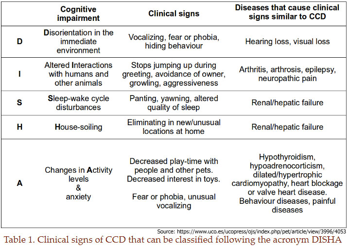 Canine Cognitive Dysfunction DISHA Chart